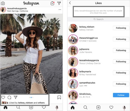 Instagram Hidden Likes - Social media trends for 2020