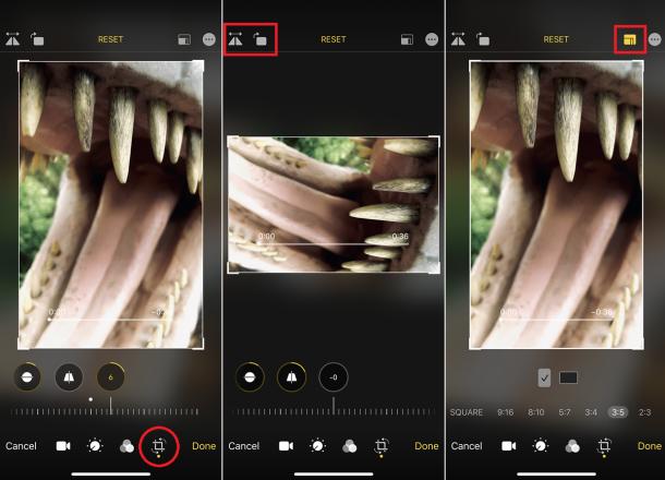 ¿Las habilidades fotográficas necesitan ser trabajadas? Cómo editar tus fotos en el iPhone