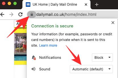 Cómo desactivar la reproducción automática en Google Chrome